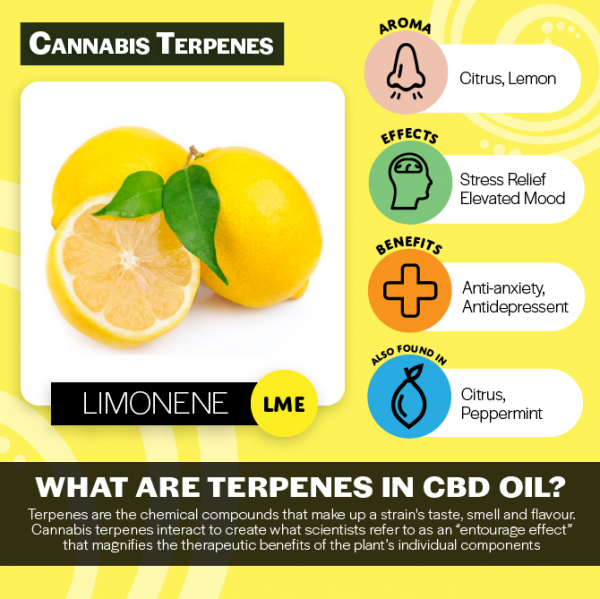 Glori Blends CBD Oil - Limone